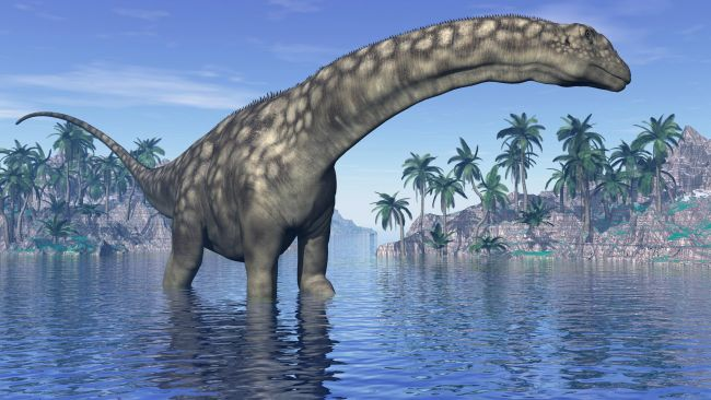 1611652283 592 Discovery of a 98 million year old fossil that probably belongs to the Discovery of a 98-million-year-old fossil that probably belongs to the largest dinosaur in history 4